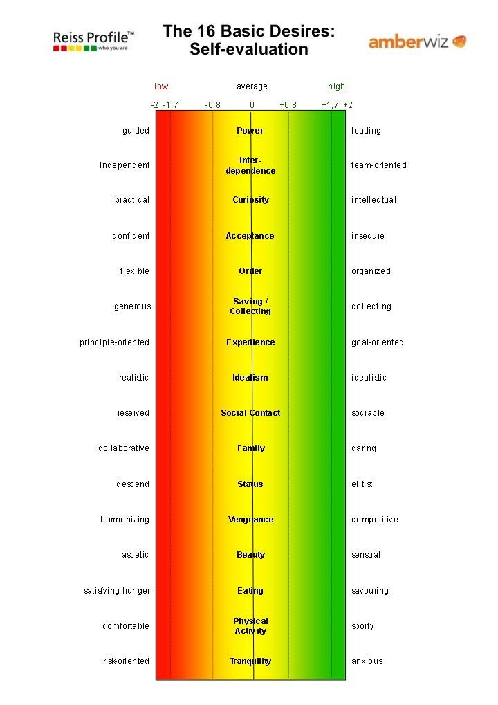 example reiss motivation profile